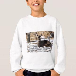 Rotwild Sweatshirt