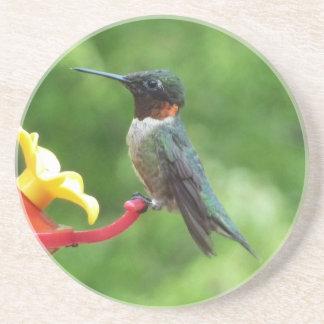 Rubin-Throated Kolibri-Vogel-Fotografie Getränkeuntersetzer