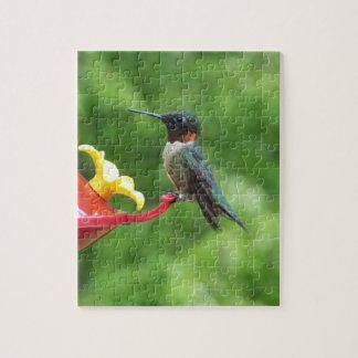 Rubin-Throated Kolibri-Vogel-Fotografie Puzzle