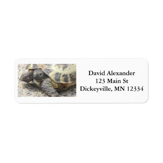 Rückholmailings-Adressen-Aufkleber mit niedlicher Rückversand-Adressaufkleber
