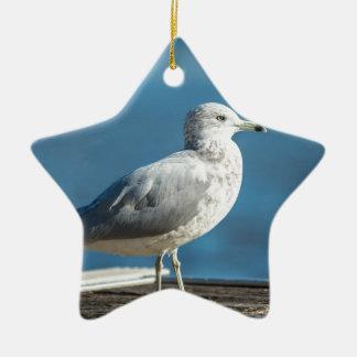 Rufen Sie mich M.Seagull an Keramik Ornament
