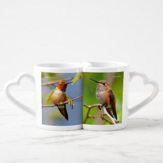 Rufous Kolibris Liebestassen