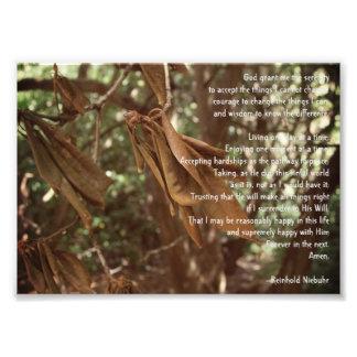 Ruhe-Gebet Fotodruck