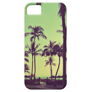 Ruhige Palme iPhone 5 Hüllen