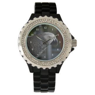 Ruhiger afrikanisches Grau-Papagei Armbanduhr