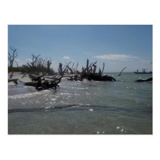 ruhiges Inselwasser im Südwesten FL Postkarte
