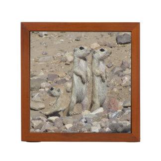 Rund-angebundene Grundeichhörnchen-Familie Stifthalter
