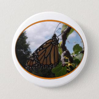 Runder Knopf 3 Zoll, Monarch-Art #2a Runder Button 7,6 Cm