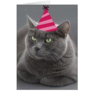 Russischer blaue Katzen-Geburtstags-Karten-Fokus Karte