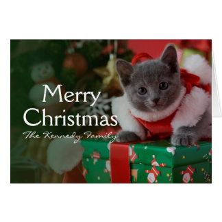 Russisches blaues Kätzchen und Weihnachten Karte