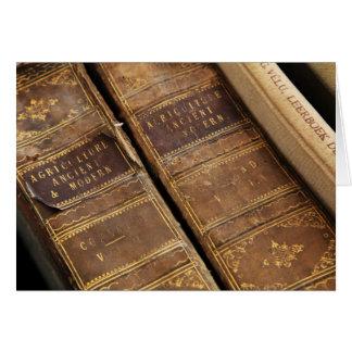 Rustikale Antike bucht leeres Notecards Karte