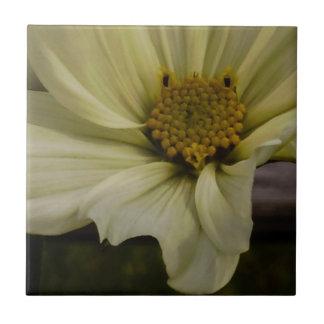Rustikale Blume Kleine Quadratische Fliese