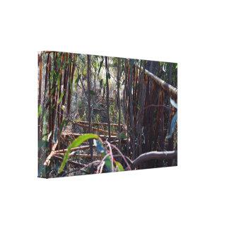 Rustikale Vintage Fuß-Brücke durch Gummi-Bäume, Leinwanddruck