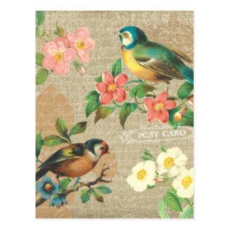 Rustikale Vintage Vogel-und Blumen-schäbige Postkarten