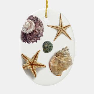 rustikaler Küstenstrand schicke Seashell Starfish Keramik Ornament