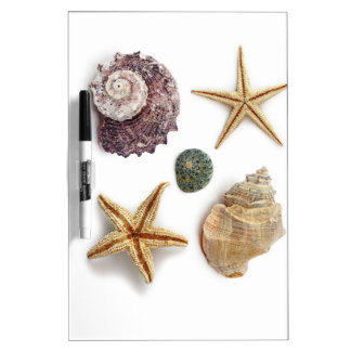 rustikaler Küstenstrand schicke Seashell Starfish Memoboard