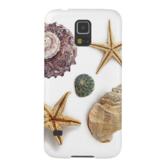 rustikaler Küstenstrand schicke Seashell Starfish Samsung Galaxy S5 Hülle