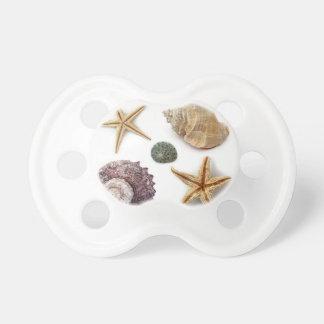 rustikaler Küstenstrand schicke Seashell Starfish Schnuller