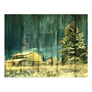 Rustikaler Winter immergrüne alte barnwood Postkarte