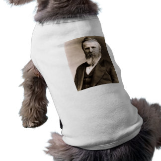 Rutherford B. Hayes Top
