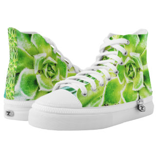 Saftige Zipz hohe Spitzenschuhe Hoch-geschnittene Sneaker