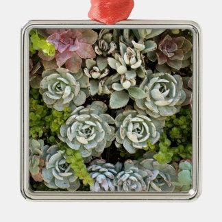 Saftiger Garten 1 Quadratisches Silberfarbenes Ornament