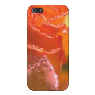 SAFTIGES iPHONE iPhone 5 Case