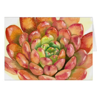 """Saftiges Sedeveria """"rosa karminrotes"""" Aquarell Karte"""