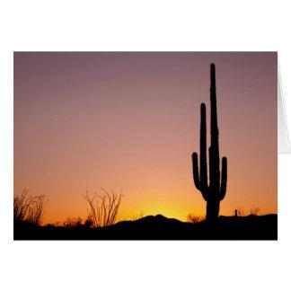 Saguaro-Kaktus am Sonnenuntergang Karte
