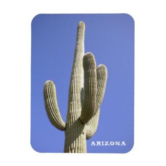 Saguaro-Kaktus - Arizona - Magnet