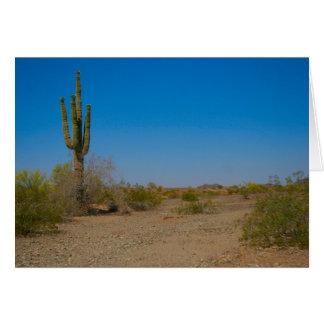 Saguaro-Kaktus auf einsamer Wüsten-Straße Karte