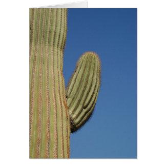 Saguaro-Kaktus Karte