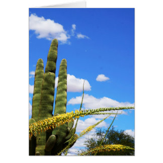 Saguaro-Kaktus und Wedel Karte
