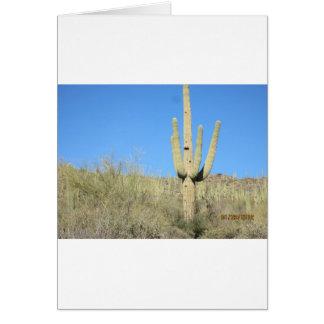 Saguaro-Kaktusprodukte Karte