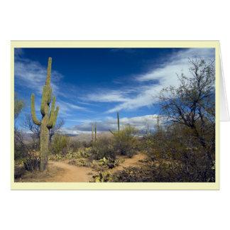 Saguaro-Landschaft Karte
