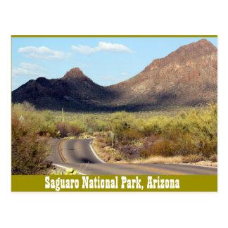 Saguaro-Nationalpark, Tuscon Arizona Postkarte