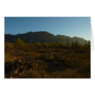 Saguaro-Sonnenaufgang am Saguaro-Nationalpark Karte