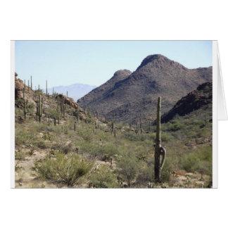 Saguaro-Wüsten-Durchlauf Karte