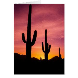 Saguarokaktus am Sonnenaufgang, Arizona Karte