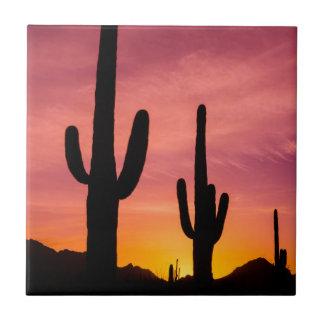 Saguarokaktus am Sonnenaufgang, Arizona Keramikfliese