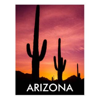 Saguarokaktus am Sonnenaufgang, Arizona Postkarte