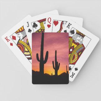 Saguarokaktus am Sonnenaufgang, Arizona Spielkarten