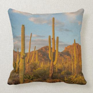 Saguarokaktus am Sonnenuntergang, Arizona Kissen