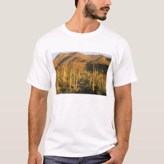 Saguarokaktus im Saguaro-Nationalpark nahe T-Shirt