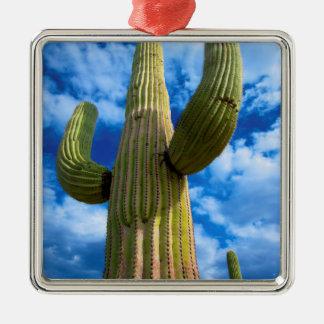 Saguarokaktusporträt, Arizona Silbernes Ornament