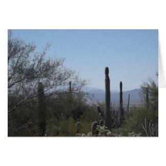 Saguaros mit einer Ansicht Karte