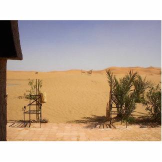 Sahara Photofigur