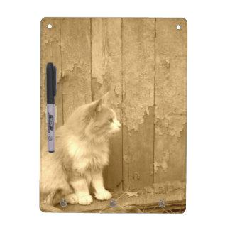 Sahara-Katze Sepia-im trockenen Löschen-Brett Memo Board