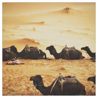 Sahara themenorientiert, Aufstellung der Kamele im Stoff