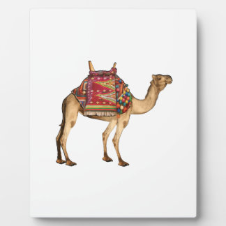 Saharataxi Fotoplatte